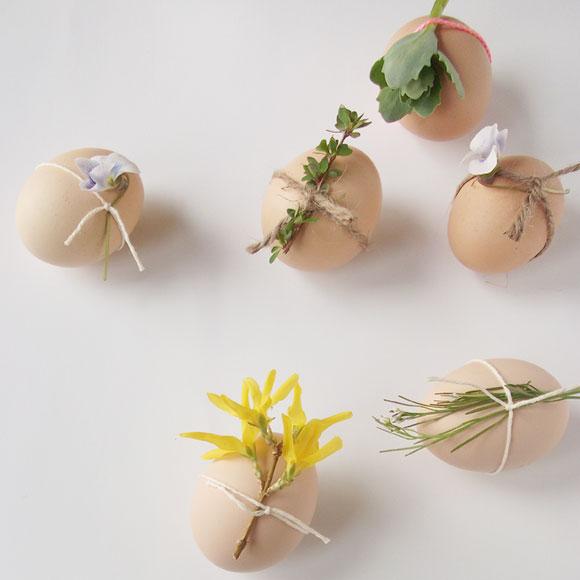 ägg med blomma
