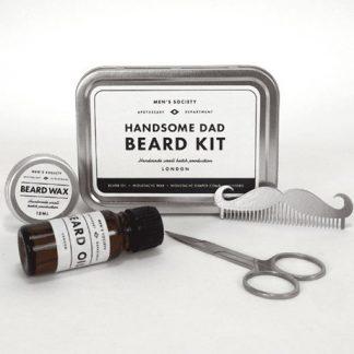 Handsome Dad Beard Kit, Silver