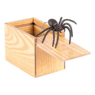 Prank Spider Box